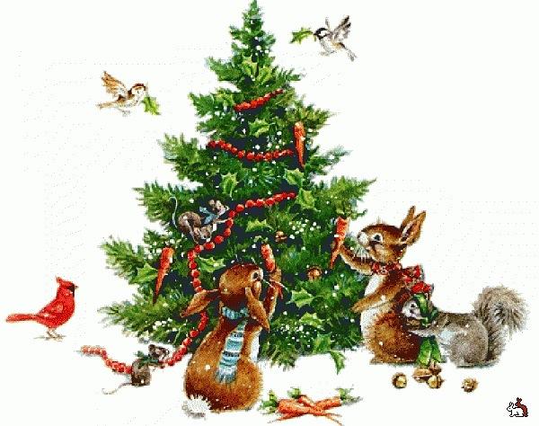 Картинки птички зимой для детей